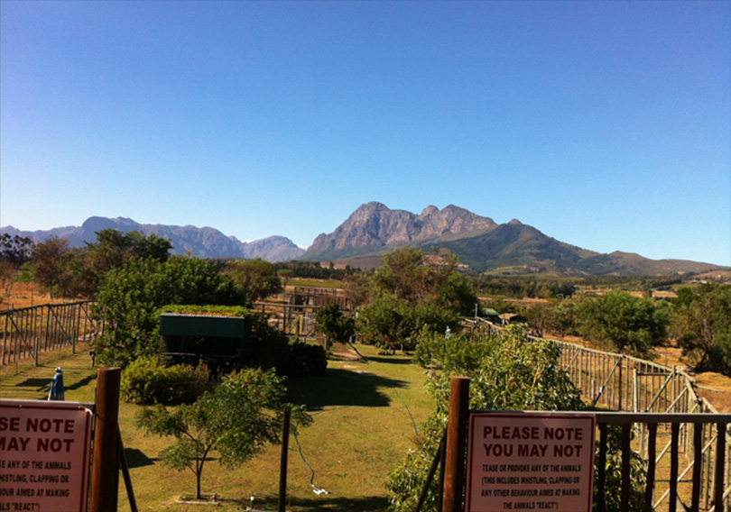 Drakenstein Lion Sanctuary ... view out over the grounds